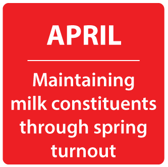 April - Maintaining milk constituents through spring turnout