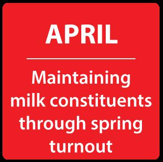 April - Maintaining milk constituents through spring turnout